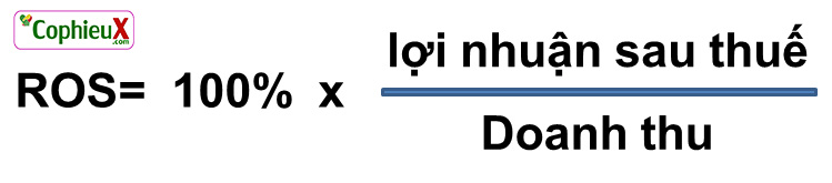 Công thức tính chỉ số ROS
