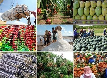 làm giàu từ nông nghiệp nhanh chóng và hiệu quả 4