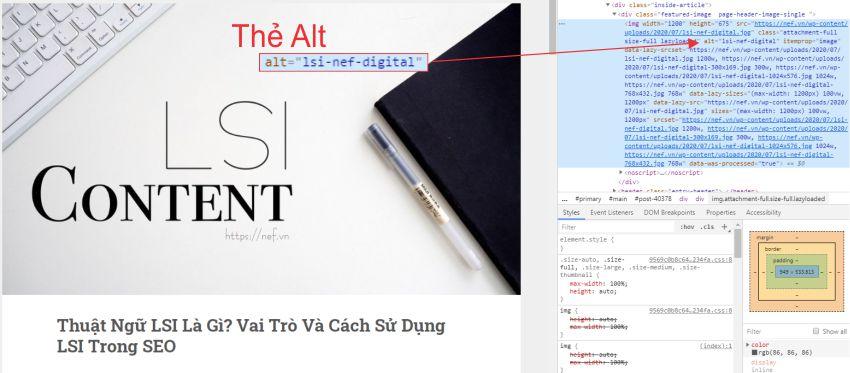 vi-tri-the-alt
